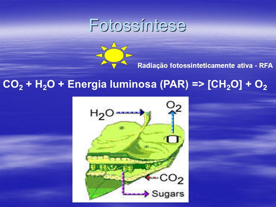 Fotossíntese CO2 + H2O + Energia luminosa (PAR) => [CH2O] + O2